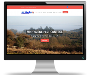mr-hygiene-pest-control-sligo-website-portfoilio
