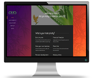 max-life-sligo-ballymote-website-design-seo-portfoilio