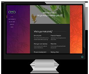max-life-sligo-ballymote-website-design-seo-portfoilio